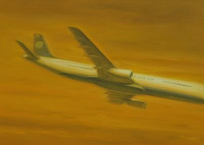 Avion, 72,5 x 106,7 cm, 2013