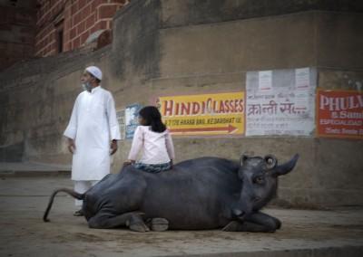 Sans titre (hindi classes), 58,4 x 81,3 cm, 2008