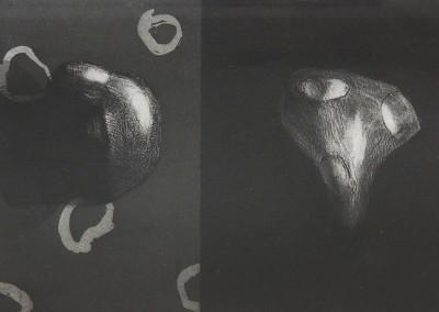 Livre de Chevet 1 et 2, 11/30, 13 x 18 cm, 2013