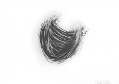 Sans titre no.1, 49 x 60.3 cm, 2012