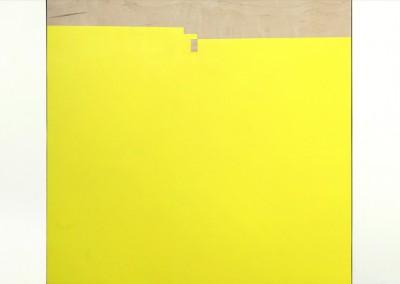 Sans titre 13, 61 x 188 cm, 2013