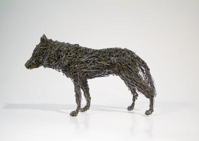 Loup gris, 14,5 x 24 x cm, 2009