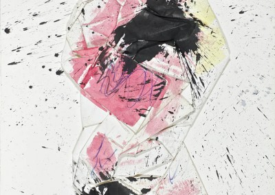 Caracara, 91.5 x 63.5 cm, 2012