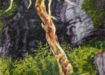Arbre, Cap-à-l'Aigle, 152.5 x 76.2 cm, 2016