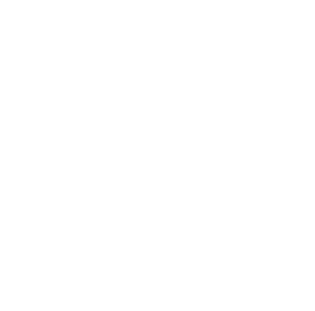 Galerie d'art Lacerte art contemporain - Exposition François Vincent