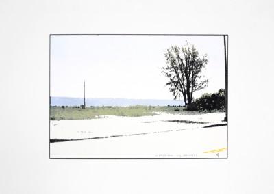 Empaysage; Site #4, 27 x 54 cm, 2016