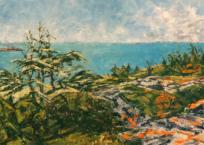 Paysage nordique V, 25.2 x 152.5 cm, 2019