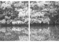 Le chenal du haut estran I, 61 x 104 cm, 2019