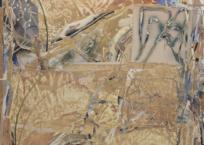 Compost XI, 165 x 120 cm, 2018