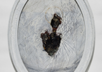 Un ange passe, 58 x 42.5 cm, 1996-2003