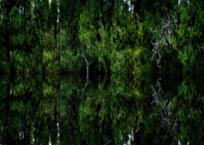 Île sud (Arcadia), 61 x 76 cm, 2009