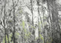 Errance VI, 122 x 183 cm, 2015, SOLD
