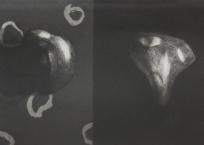 Livre de Chevet 1 et 2, 13 x 18 cm, 2013