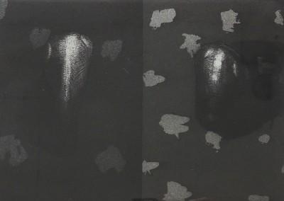 Livre de chevet 3 et 4, 13 x 18 cm, 2013