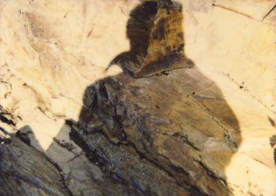 Mon ombre : sans doute 2, 69 x 90 cm, 2009