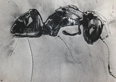 Poussière de fourmis, 22 x 28.5 cm, 2015, SOLD