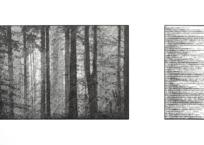 Suivant l'idée d'une forêt ; fabulation I, 43 x 76 cm, 2016