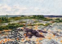 Paysage nordique II-Baie-Johan-Beetz - Lichen, 24.3 x 68.6 cm, 2018