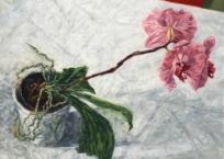 Orchidé, 23 x 30.5 cm, 2018
