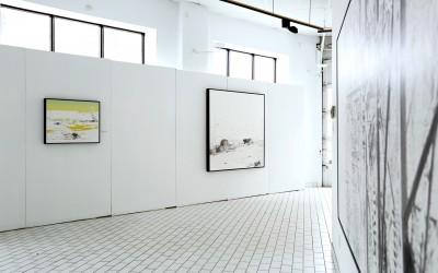 Exposition Eveline Boulva - Errances