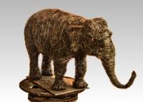 Éléphant d'Asie, 89 x 51 x 43 cm, 2014